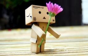 Обои Danboard: Цветок, Подарок, Danboard, Robot, Настроения