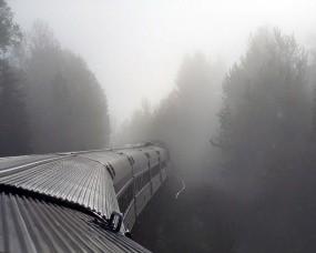 Обои Поезд в тумане: Лес, Туман, Поезд, Настроения