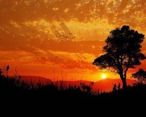 Обои Любующиеся закатом: Закат, Вечер, Влюбленные, Настроения