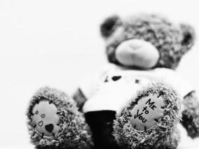 Обои Мишка тедди: Игрушка, Медведь, Мишка Тедди, Настроения