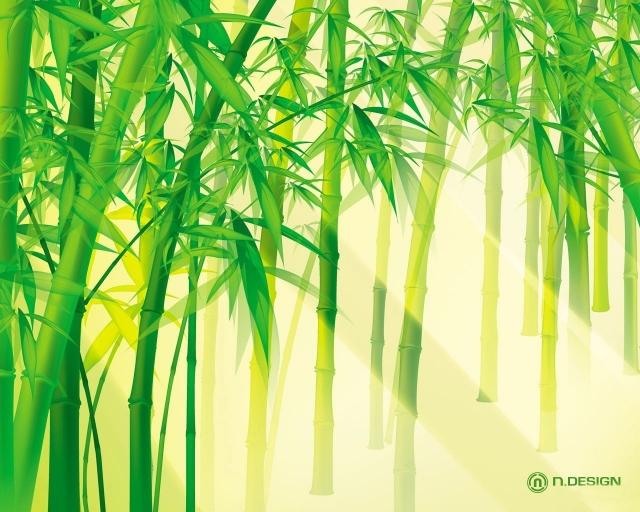 Солнце сквозь бамбук