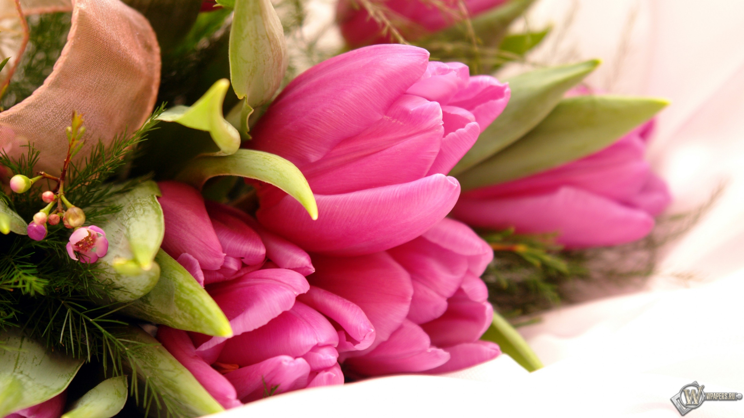 скачать картинки цветов: