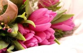 Обои Букет цветов: Цветы, Тюльпаны, Букет, Цветы