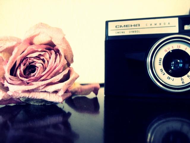 Роза и фотоаппарат