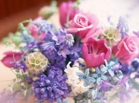 Обои Букет цветов: Цветы, Букет, Тюльпан, Цветы