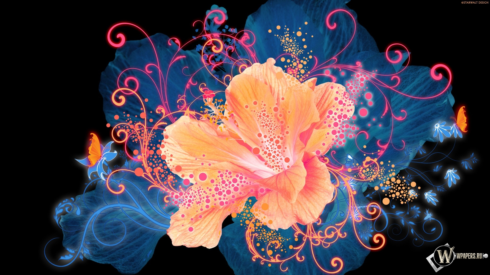 Светящийся цветок 1920x1080