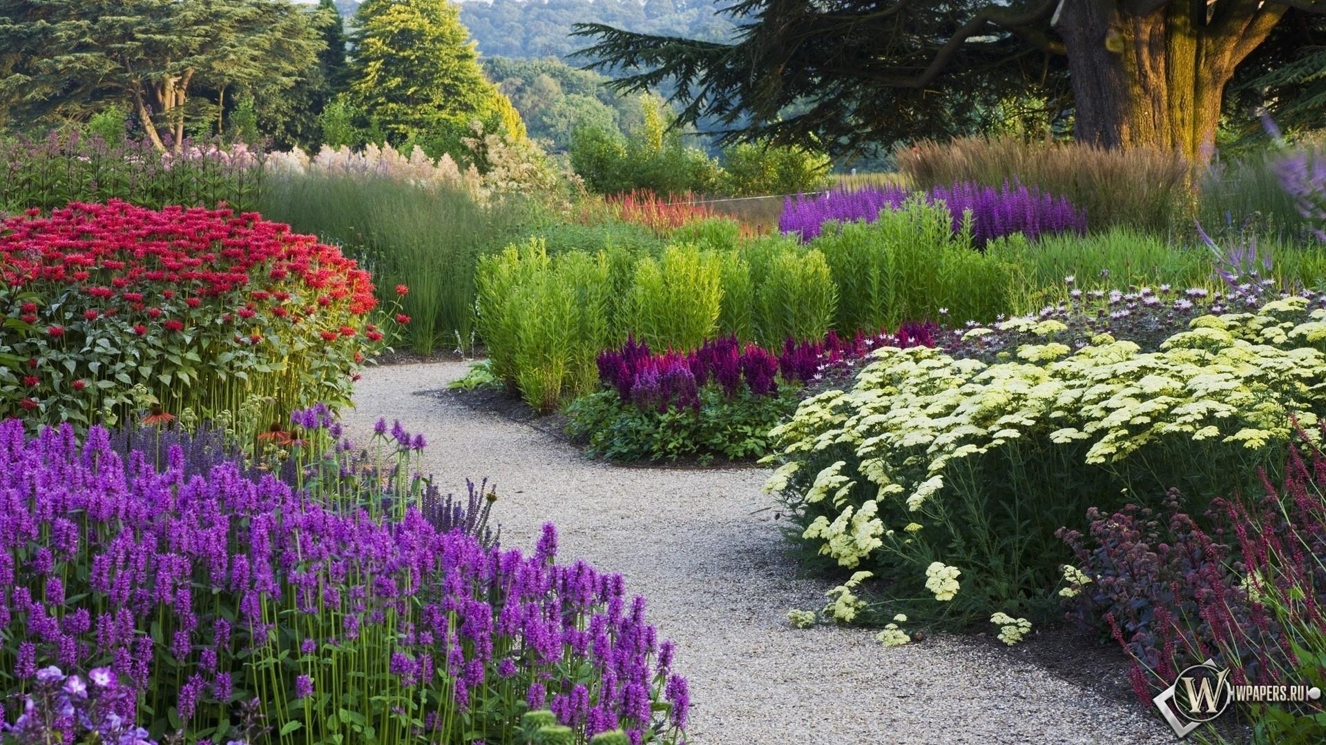 Цветочный сад 1920x1080