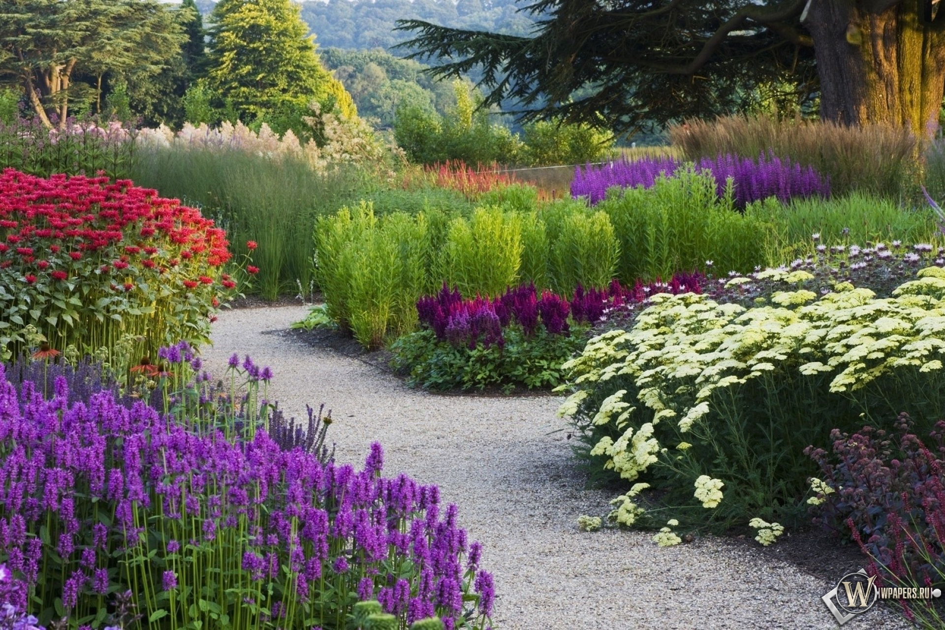 обои на рабочий стол цветы в саду на даче № 225519 бесплатно