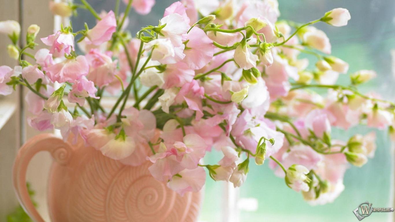 обои для рабочего стола цветок: