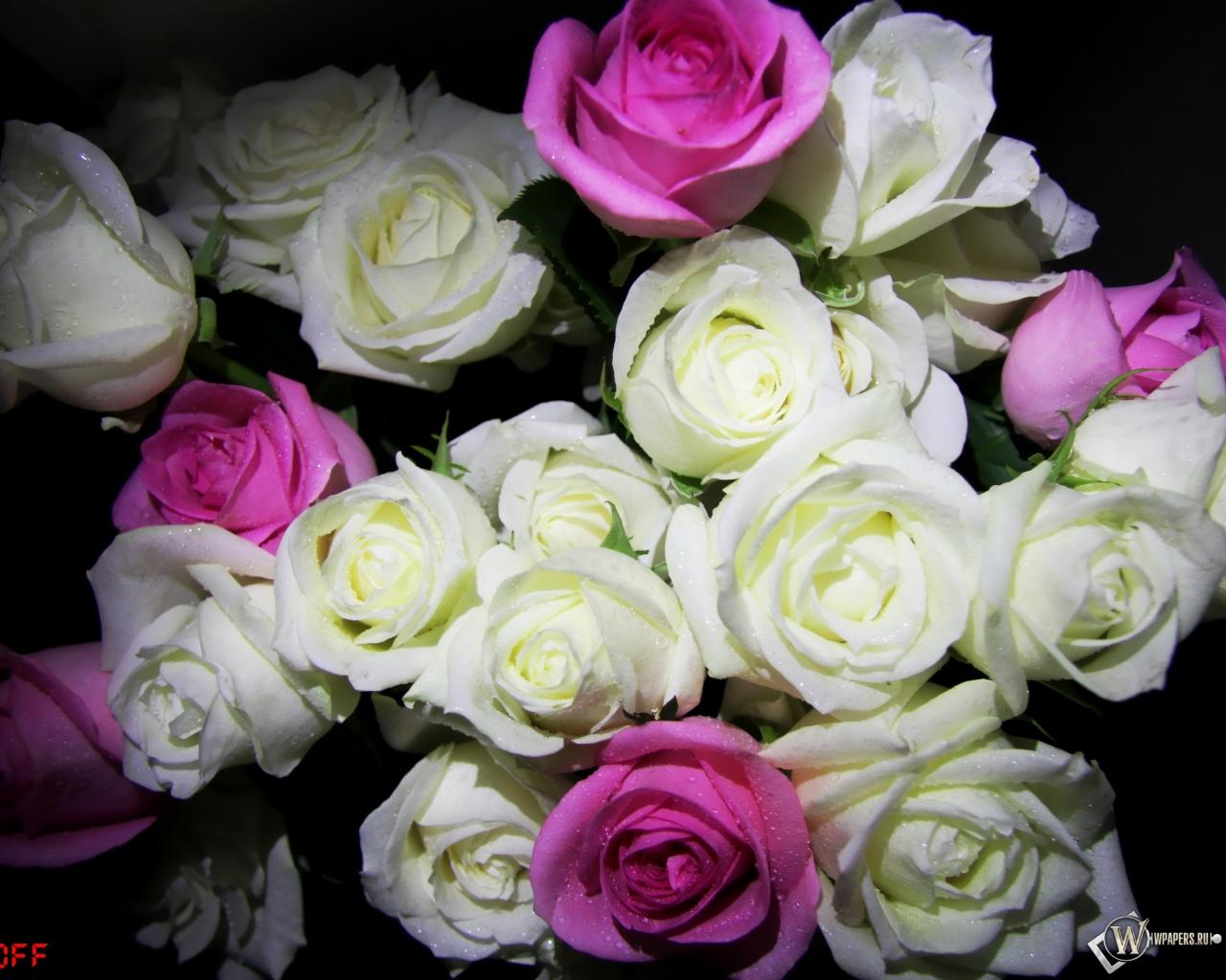 Обои букет роз цветы розы букет rose