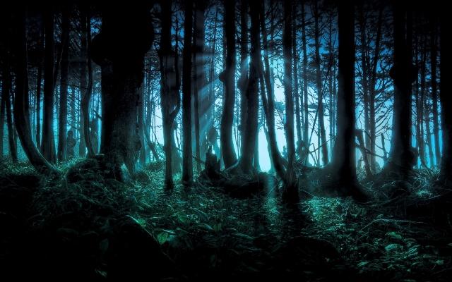 обои лес: