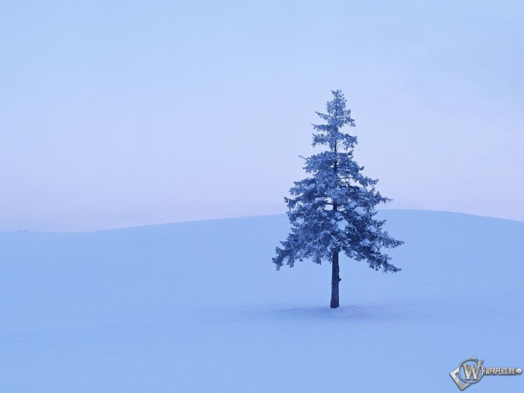 Стихотворение о зиме для детского сада