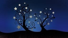 Обои Деревья со звёздами: Деревья, Ночь, Звёзды, Деревья