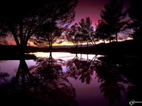 Обои Ночной пейзаж: Отражение, Вода, Деревья, Ночь, Закат, Деревья