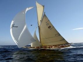 Обои Соревнование парусников: Скорость, Яхта, Парусник, Паруса, Спорт