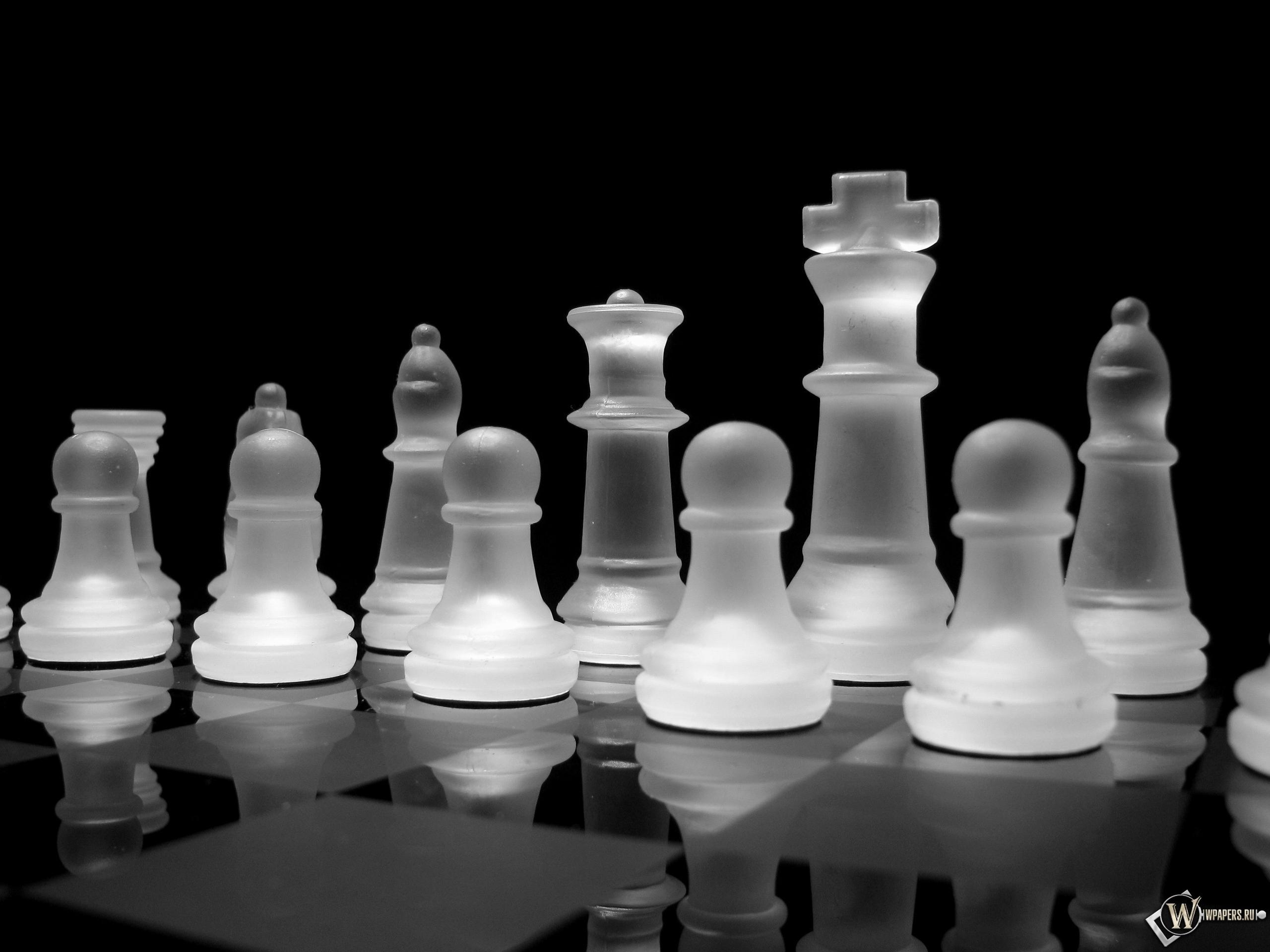 игра шахматы скачать бесплатно