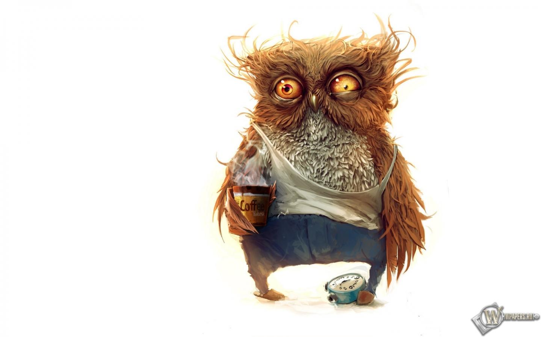 Обои сова утром птица утро сова