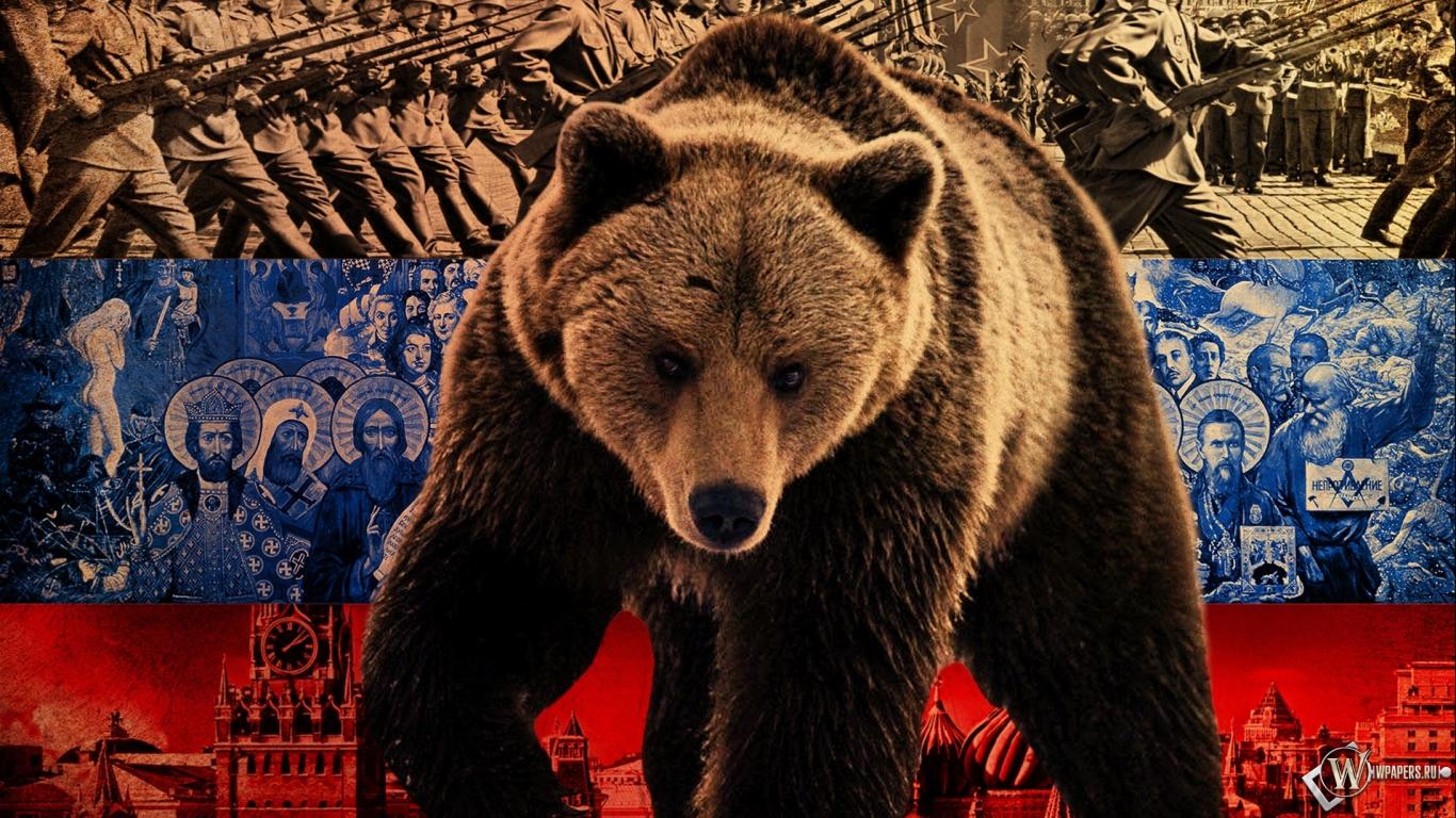 Обои русский медведь на рабочий стол с