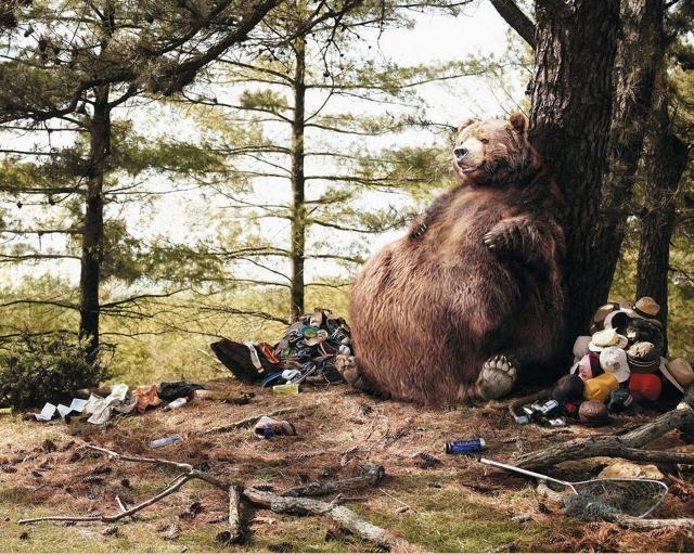 Медведь съел туристов
