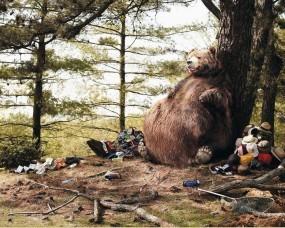 Обои Медведь съел туристов: Медведь, Юмор, Одежда, Живот, Туристы, Медведи