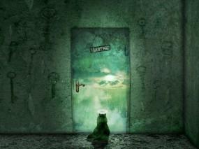 Обои Кот у закрытой двери: Кот, Дверь, Мяу, Кошки