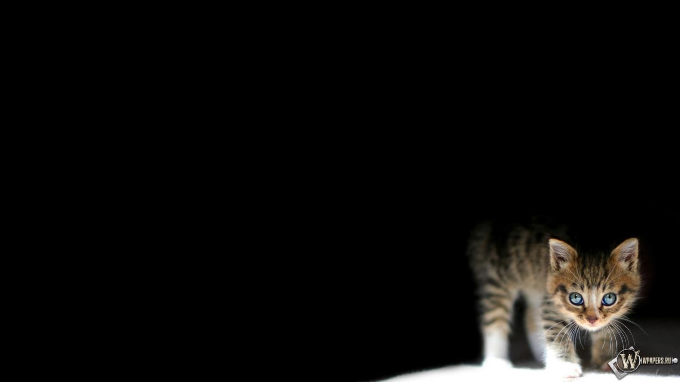 Алла Пугачева биография фото все новости интересные