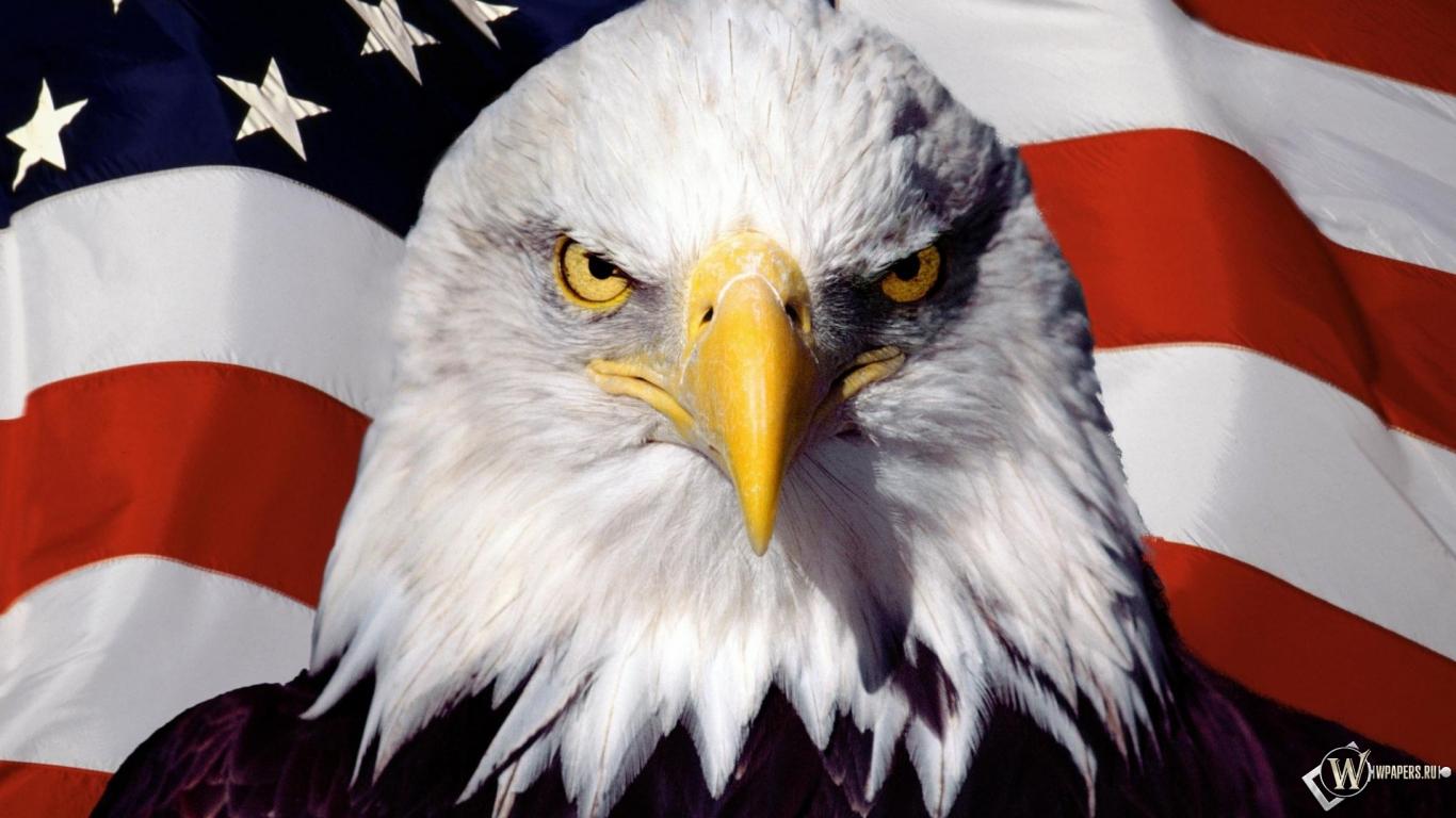 Орёл флаг америка сша 1366x768 картинки