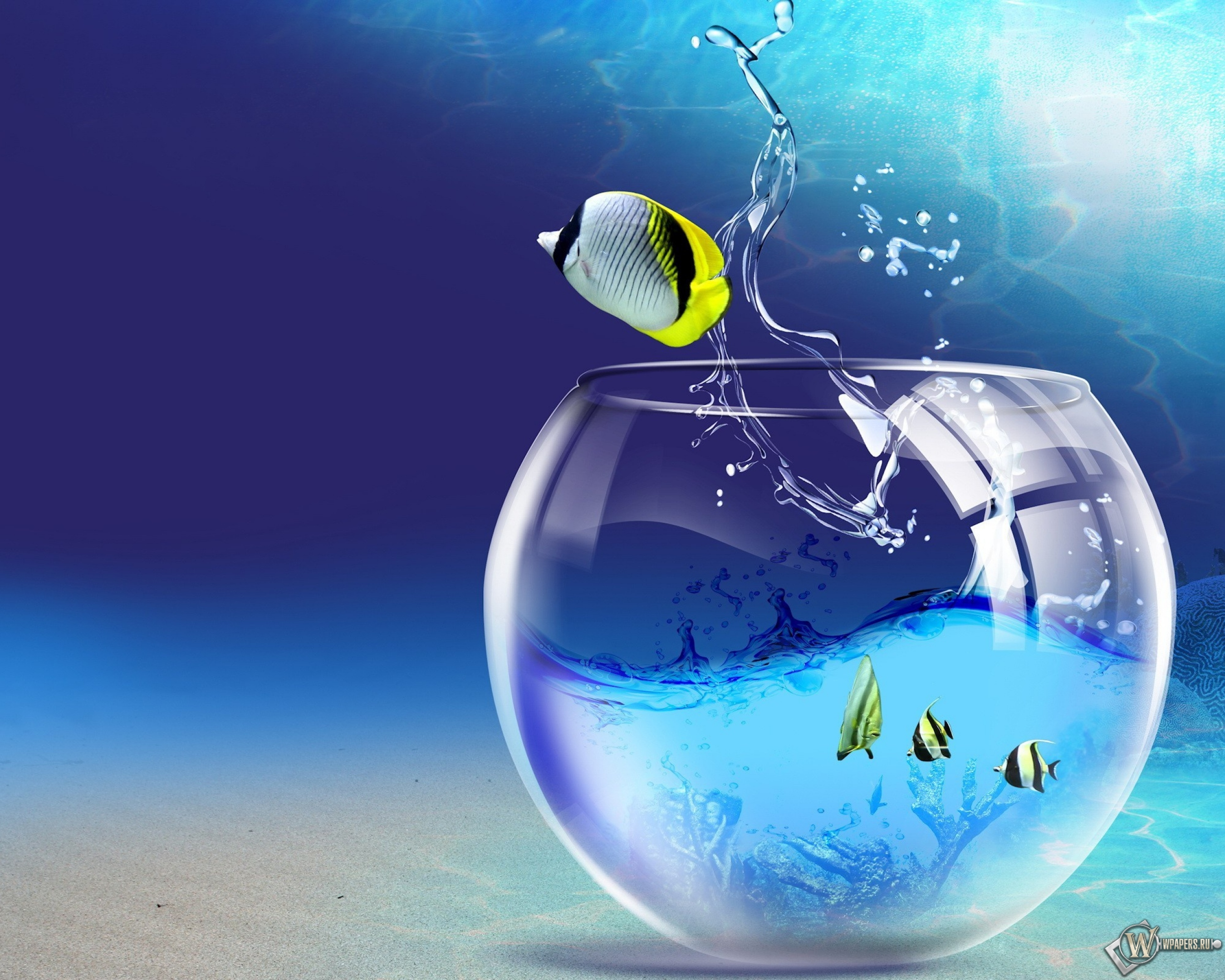 Бирюзовый аквариум вода аквариум