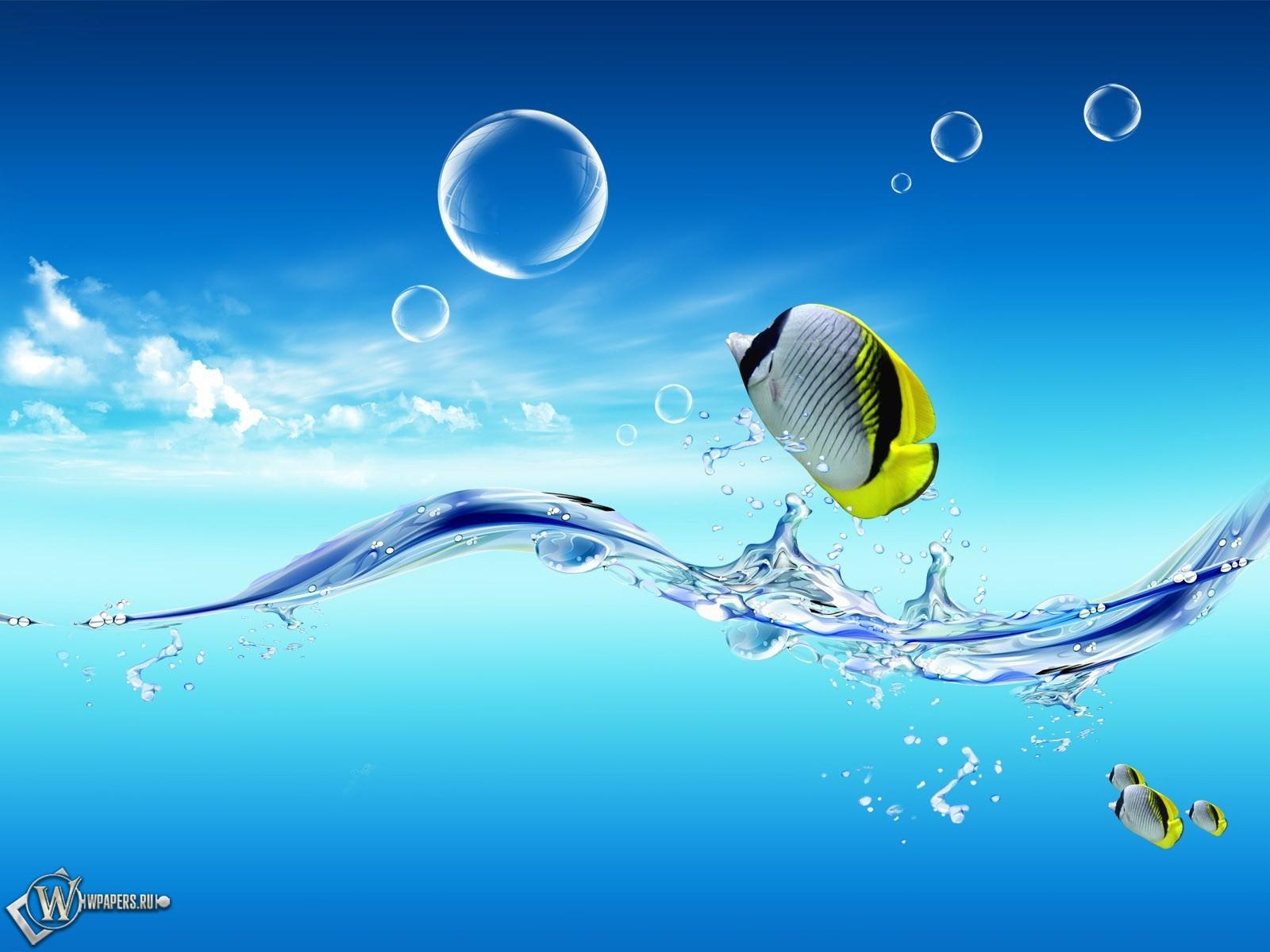 Обои рыбки вода небо рыбки 1600x1200