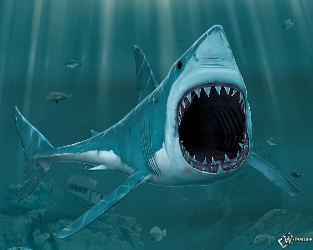 Рисованая акула 1280x1024