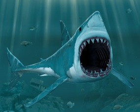 Обои Рисованая акула: Рисунок, Пасть, Акула, Рыбы