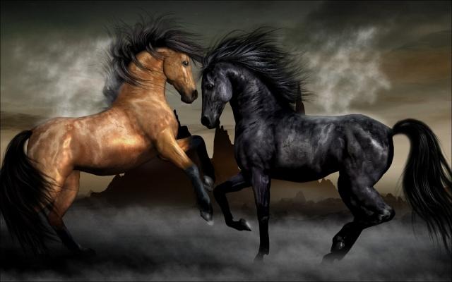 Обои с Лошадьми для рабочего стола. Скачать обои и фото Лошади.