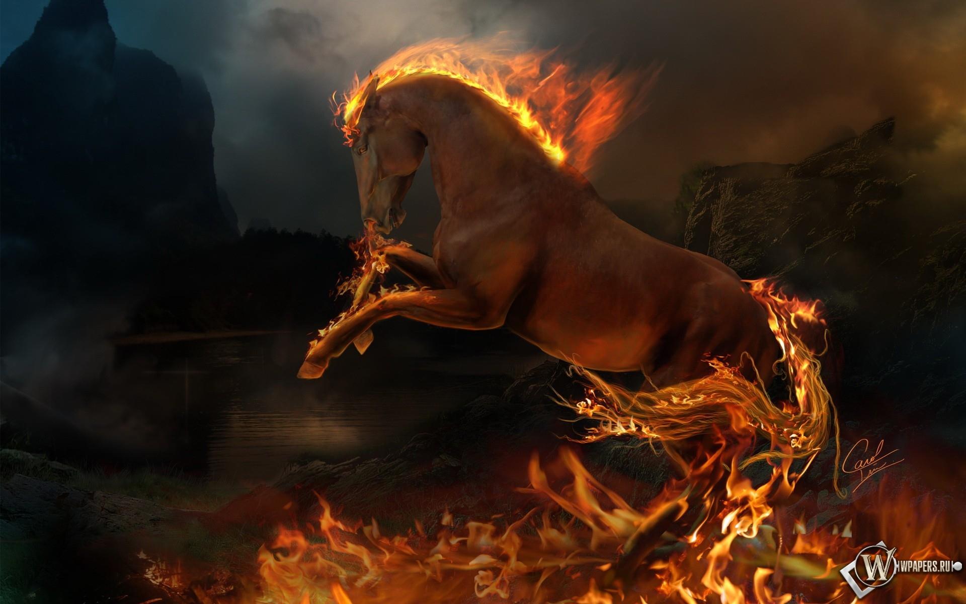 Огненый конь 1920x1200