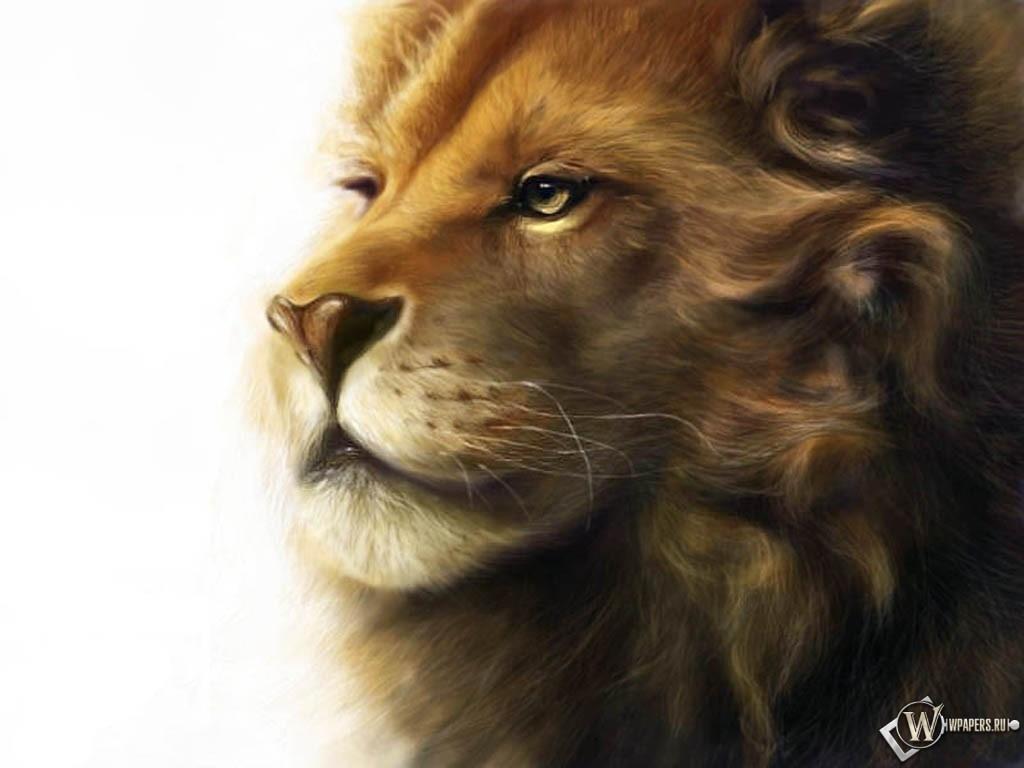 Рисованный Лев 1024x768