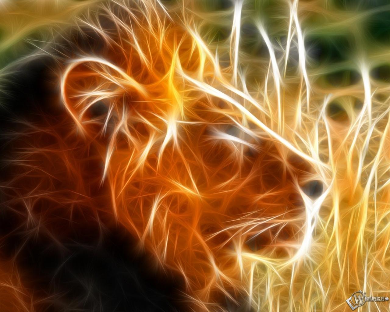 Обои огненный лев огонь лев 1280x1024
