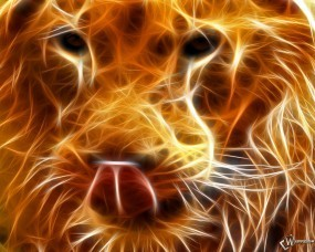 Обои Огненный лев: Пламя, Морда, Огненные линии, Львы