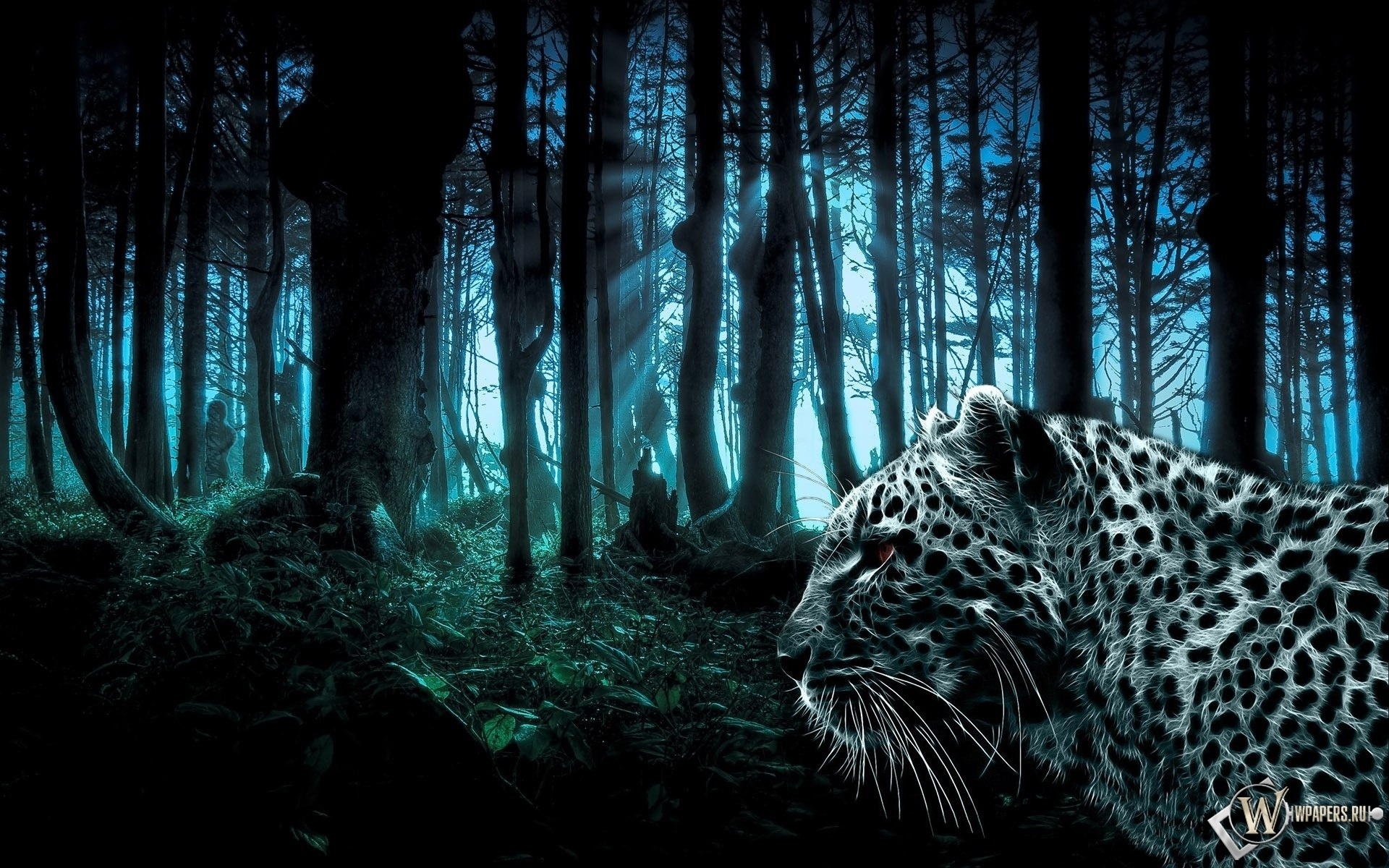 Лес и леопард 1920x1200