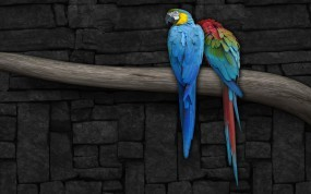 Обои Попугаи на ветке: Стена, Рисунок, Ветка, Попугай, Попугаи