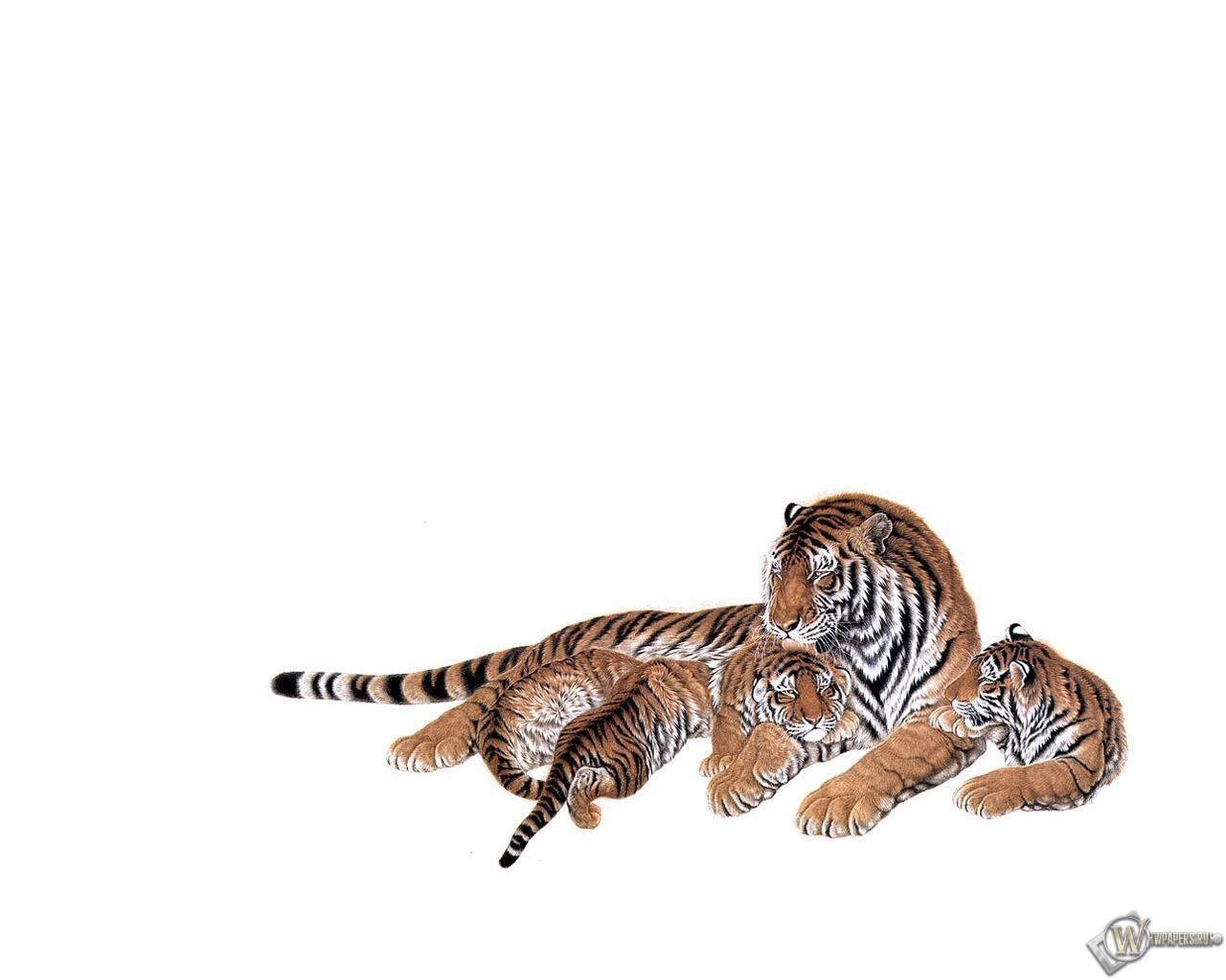 Тигрица с тигрятами 1280x1024