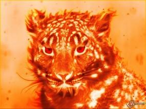 Обои Огненный тигр: Огонь, Тигр, Тигры