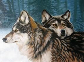 Обои Два волка: Зима, Лес, Волк, Арт, Волки