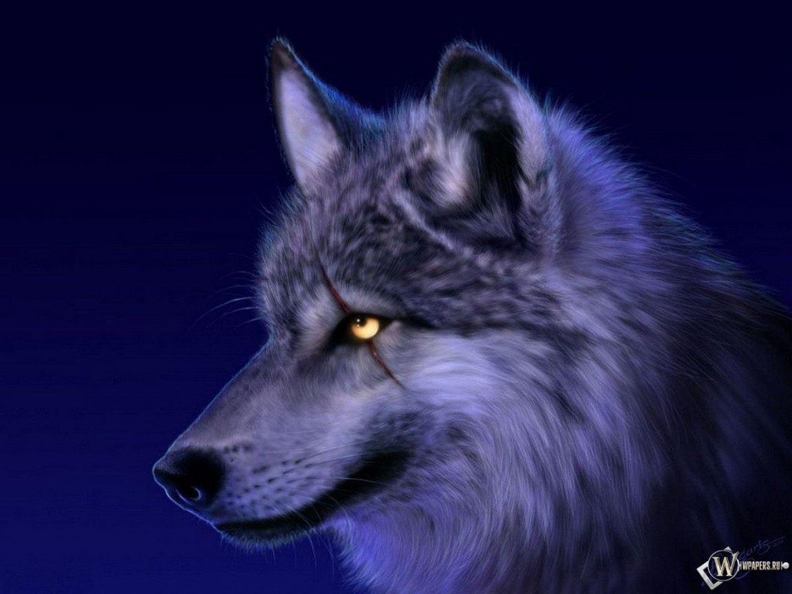 Сверепый волк 1152x864