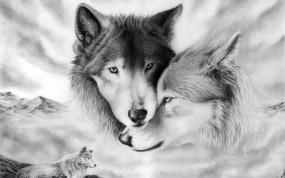 Обои Волки: Рисунок, Волки, Стая, Связь, Волки