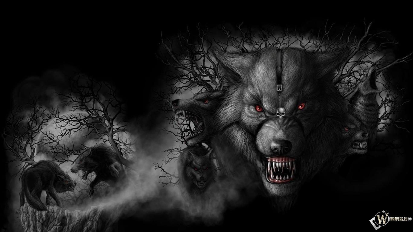 Волки 1366x768