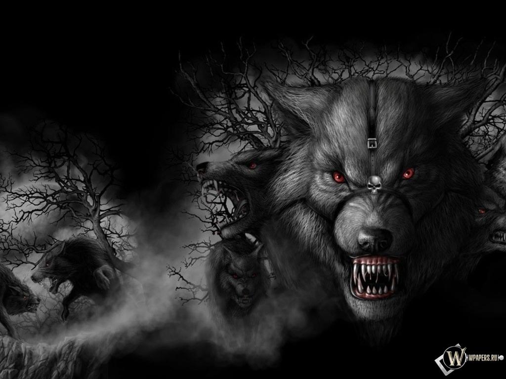 Волк фото на аву 8
