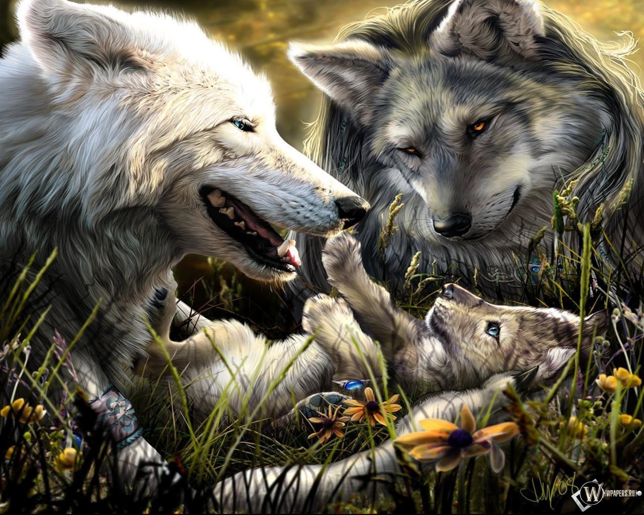 Волки с волчонком 1280x1024