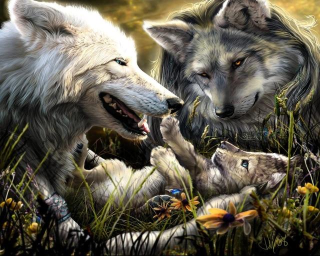 Волки с волчонком