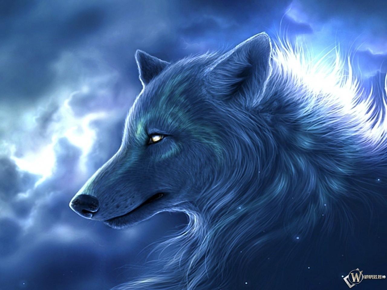 Злой волк картинки карандашом - 37
