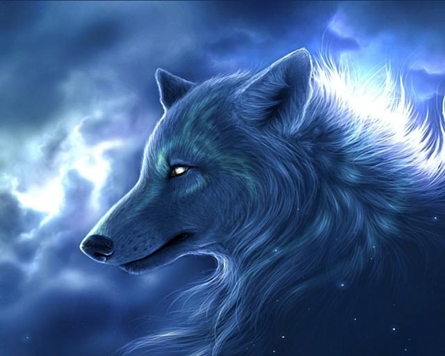 Ночьной волк