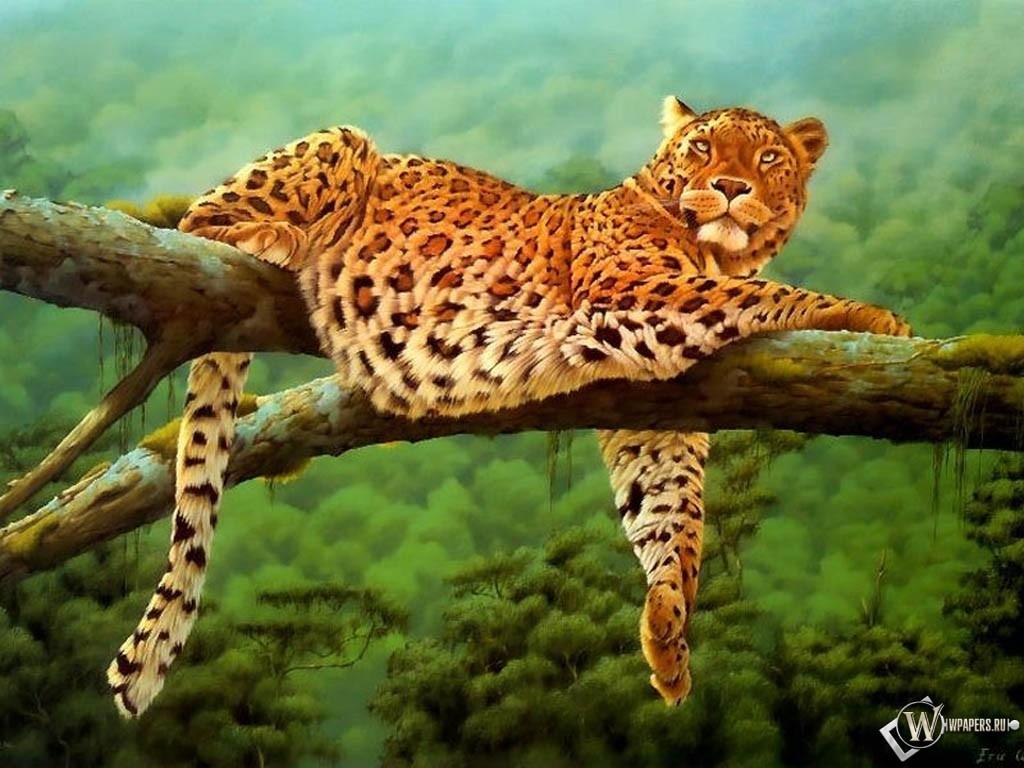 Ягуар на дереве 1024x768